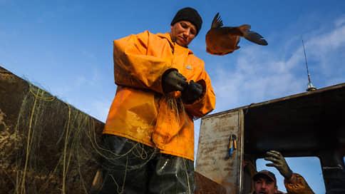 Холодильники не держат улов  / Рыбаки не поддержали выдачу квот под рефконтейнеры