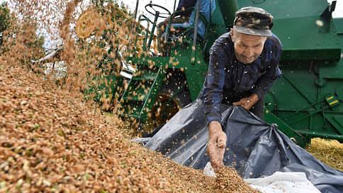 В зерне прорастают цены // Майские праздники подогрели спрос на российскую пшеницу