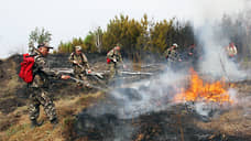 В лесах потеряли пожары