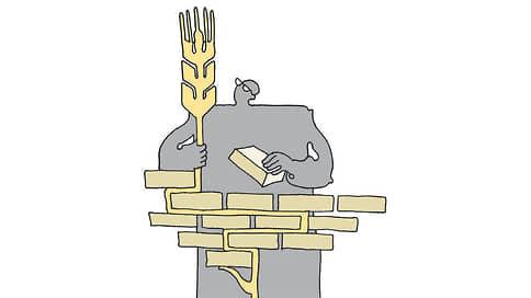 Мельники идут к пшенице  / Турецкие мукомолы планируют строительство площадок в России