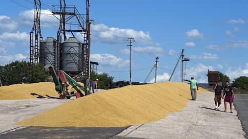 Зерно посыпалось за границу  / Экспорт пшеницы в июне резко ускорился