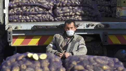 Минсельхоз наварит борща // Власти ищут меры снижения цен на картофель и овощи