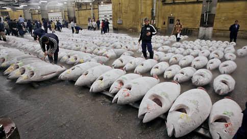 Праздник без тунца // Импорт этой рыбы в Россию сокращается