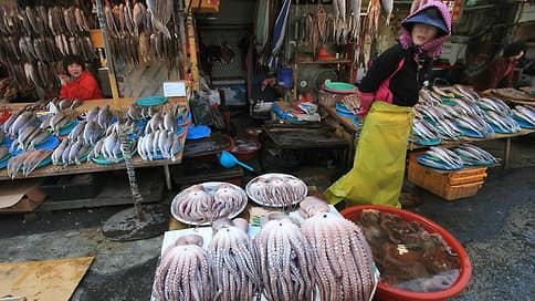 Осьминоги сделали ноги  / Ресторанам не хватает морепродуктов