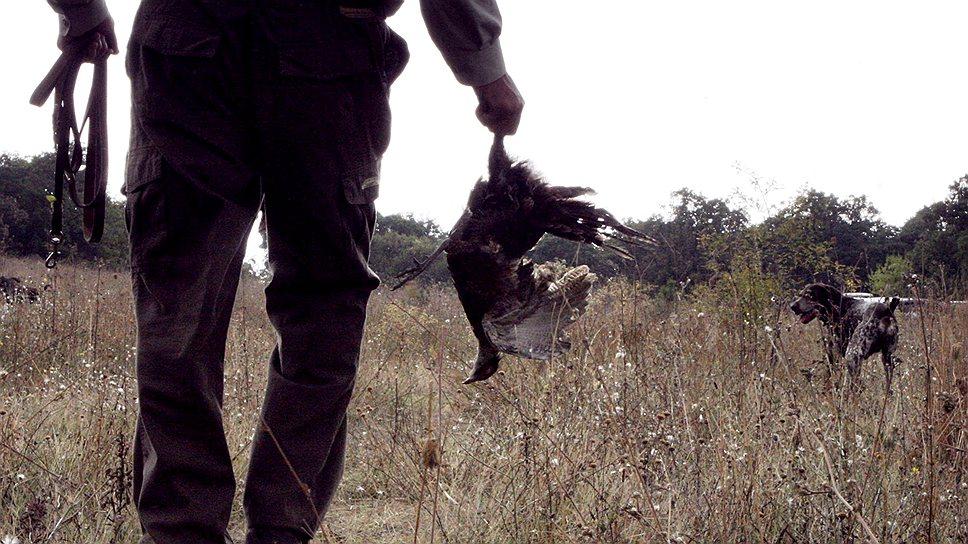 Власти уверены, что уйти от ответственности за незаконную охоту не удастся никому