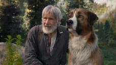 «Явсе еще работаю над собственной храбростью»  / Легендарный актер Харрисон Форд— о«Зове предков», бороде ипутешествиях
