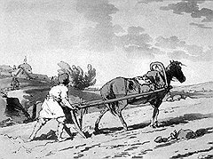Крестьянская лошадь выигрывала у пахаря в силе, но сильно проигрывала ему в цене