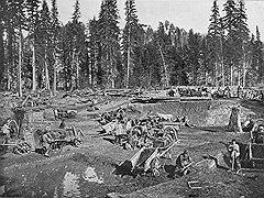 Состояния многих вельмож, управлявших Сибирью, значительно прирастали ее природными богатствами