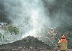 С тех пор как забросили торфяники, дым отечества стал горек и неприятен