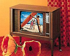 Нишу на американском рынке телевизоров компания Philips получила путем установления контроля над занимавшей ее фирмой Magnavox