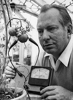 Пока Рон Хаббард изучал, чувствуют ли помидоры боль, его сподвижники стремились побольнее ударить по журналистке Паулетт Купер