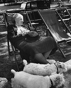 Пожилые леди приезжали в Истборн, чтобы мирно окончить свои дни. Доктор Адамс помогал им быстрее достичь этой цели