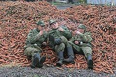 Нецелевое использование солдат вряд ли прекратится, даже когда их командиров официально лишат возможности заниматься почти всеми видами хозяйственной деятельности