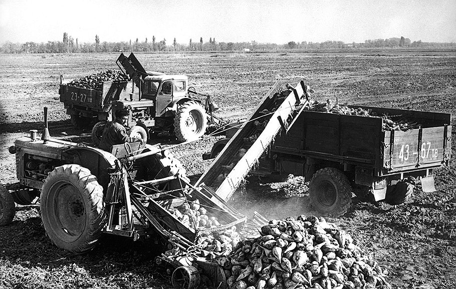 Верховный суд СССР установил, что для самогоноварения используется не сахар со складов, а урожай с колхозных полей