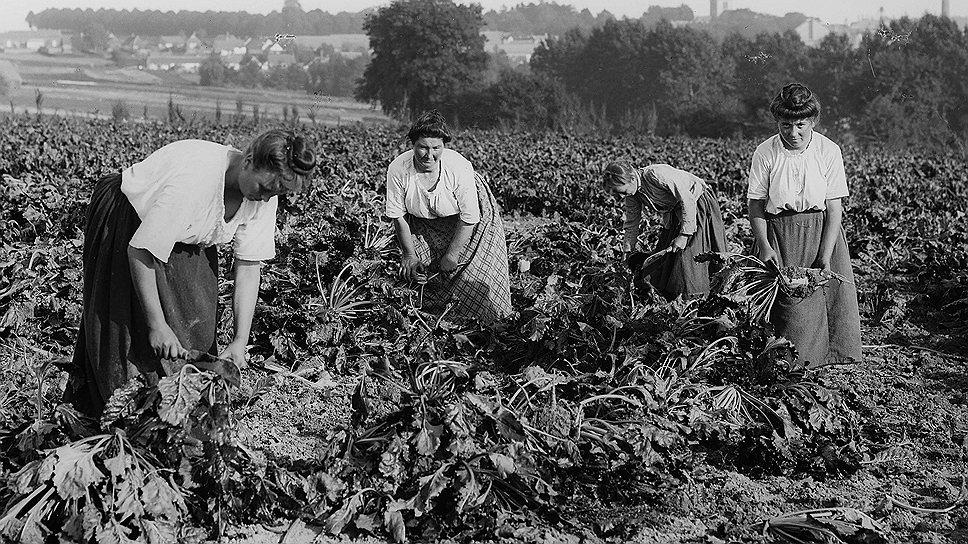 Французские крестьяне были готовы изжарить и съесть всякого, кто казался им похожим на германского шпиона