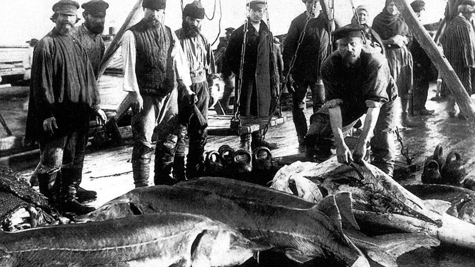 На любые ограничивающие действия правительства рыбопромышленники находили эффективный противоправный ответ