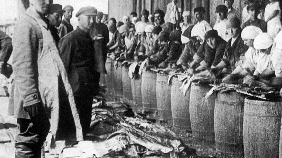 Из-за хищнического вылова сельди за десять лет ее уловы уменьшились почти в пять раз, а цены на нее выросли в шесть
