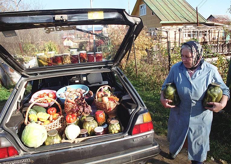 Хотя большинству дачников выращенные овощи и фрукты обходятся значительно дороже купленных, у горожан находится множество аргументов в пользу своего огорода