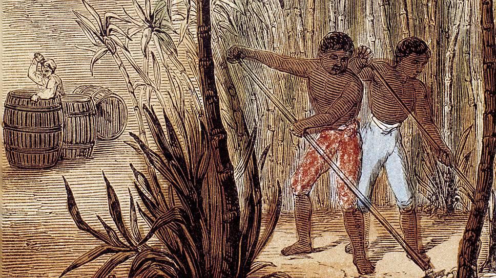 В Европе сахар был редок, и островные плантации сахарного тростника формировали огромный спрос на рабсилу