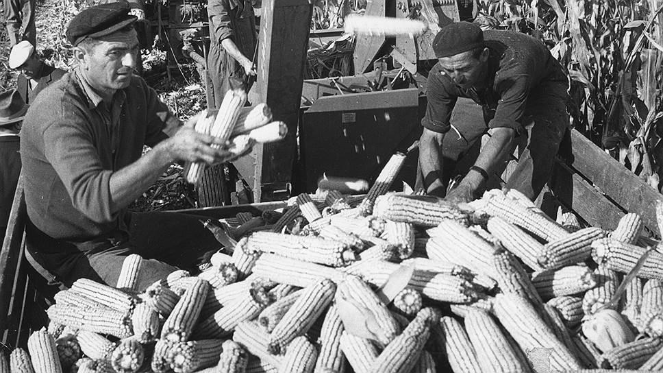 Частный бизнес мог быть только мелким, что ограничивало механизацию сельского хозяйства