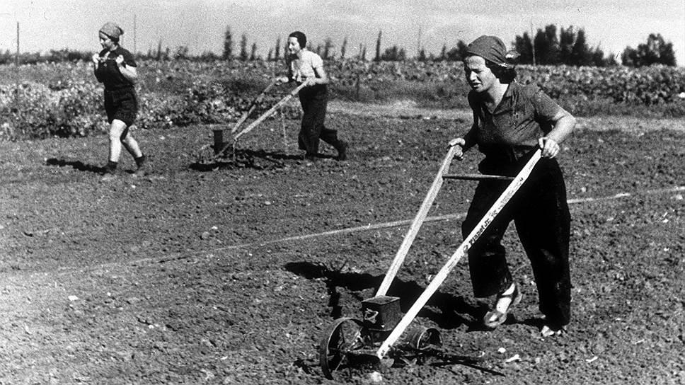 Традиционный кибуц — это когда у фермеров общее все, кроме жен