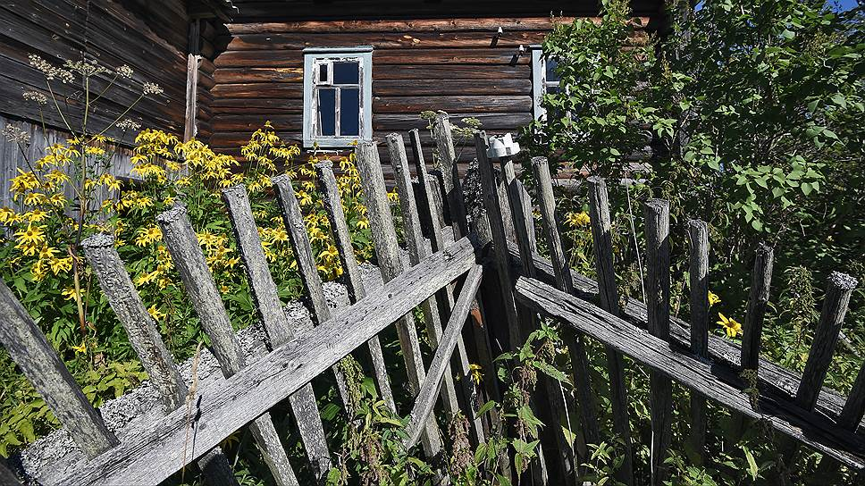 Огромные северные дома, в которых люди жили вместе со скотиной и птицей, стоят в Степино более ста лет