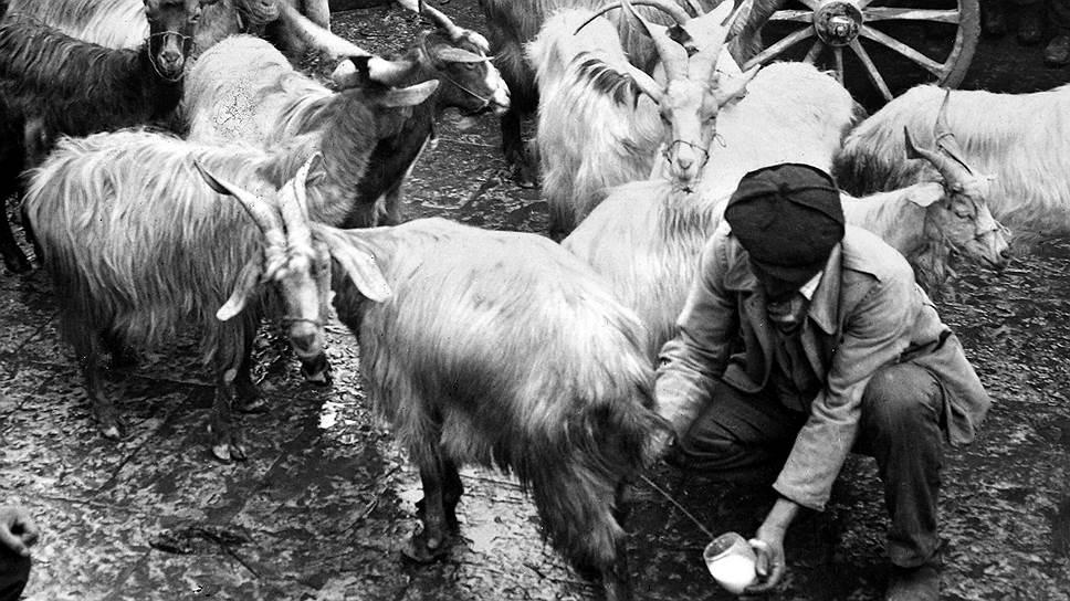 В конце XIX — начале XX века Сицилия была бедным аграрным регионом. Им и осталась