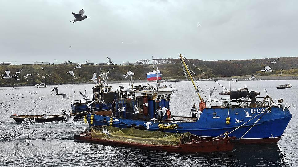Мощностей российских верфей вряд ли хватит для строительства рыболовных траулеров в нужные сроки