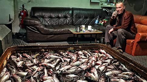 Минтайное стало явным  / Кто выиграл от ухода из России крупнейшей китайской рыбной компании