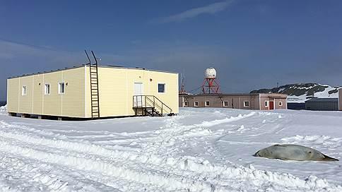 «Беллинсгаузен» принял «Первый антарктический саммит предпринимателей»