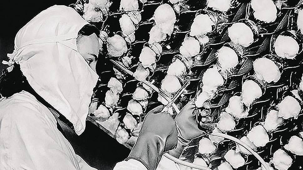 Так выглядело производство пенициллина в1944году. Фармацевты высаживали встерильную питательную среду культуру плесневого грибка penicillium notatum, через десять дней собирали урожай, азатем превращали активное антибактериальное вещество впорошок