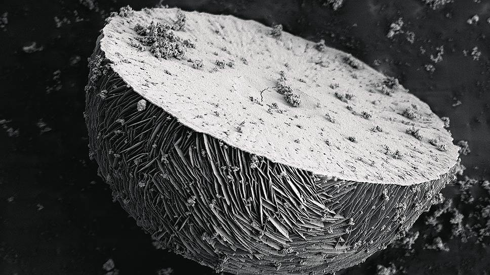 Микроструктура слоистых материалов на основе редкоземельных элементов церия