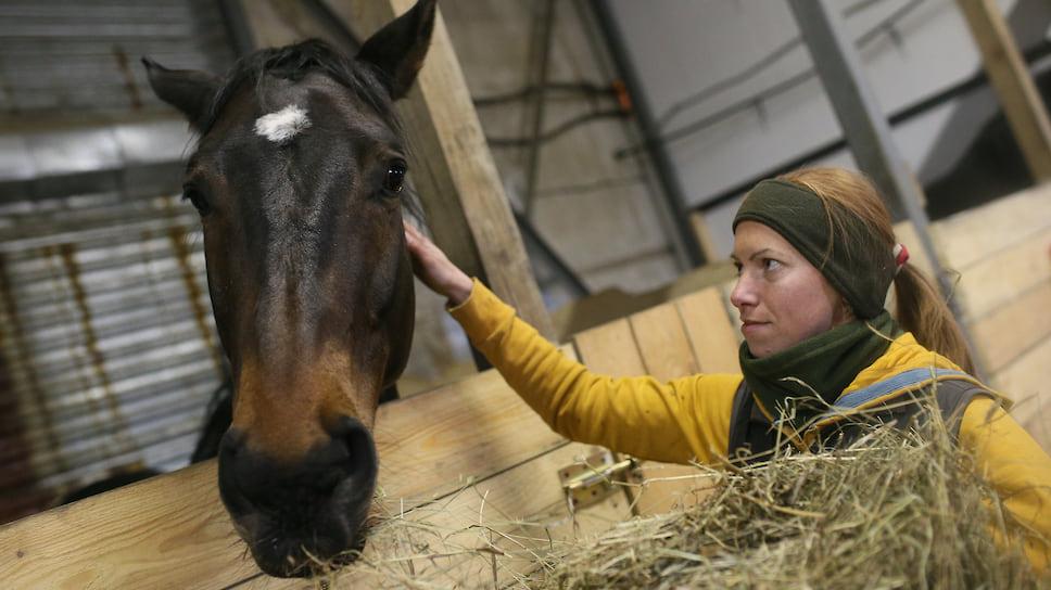 Сериал про аллергию: перхоть лошади