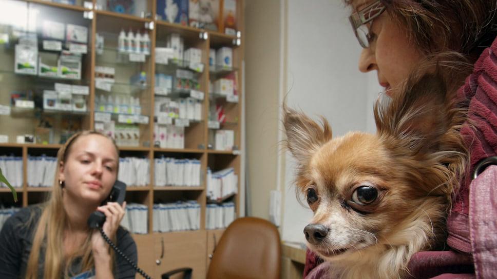 Собачье лекарство помогает онкологическому больному