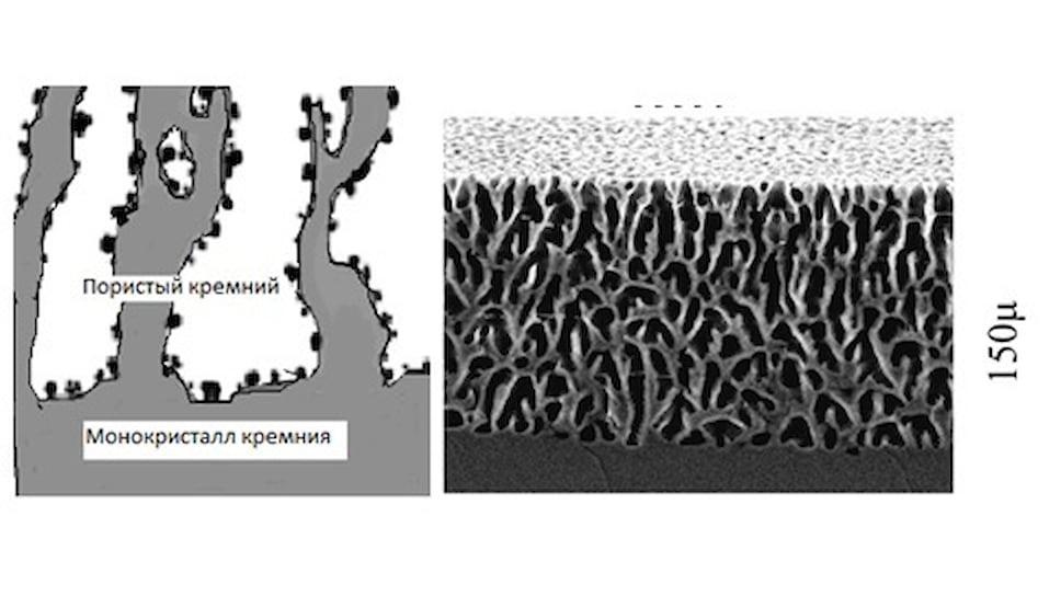 Схематичное изображение пористого кремния и его изображение с растрового электронного микроскопа