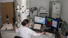 Ископаемые растения и современные микроскопы  / Как томография помогает вглядываться в миллионы лет