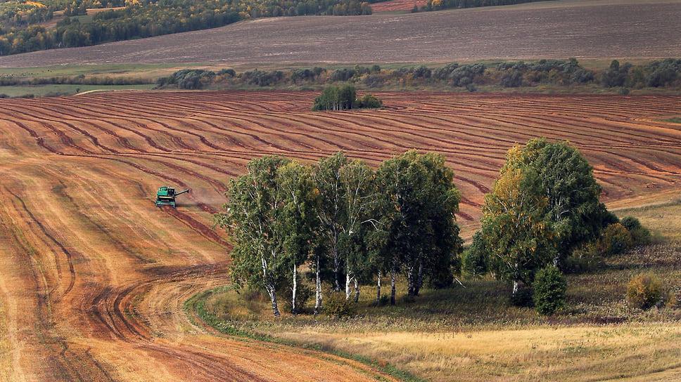 Российская компания разработала геоинформационный сервис для аграриев