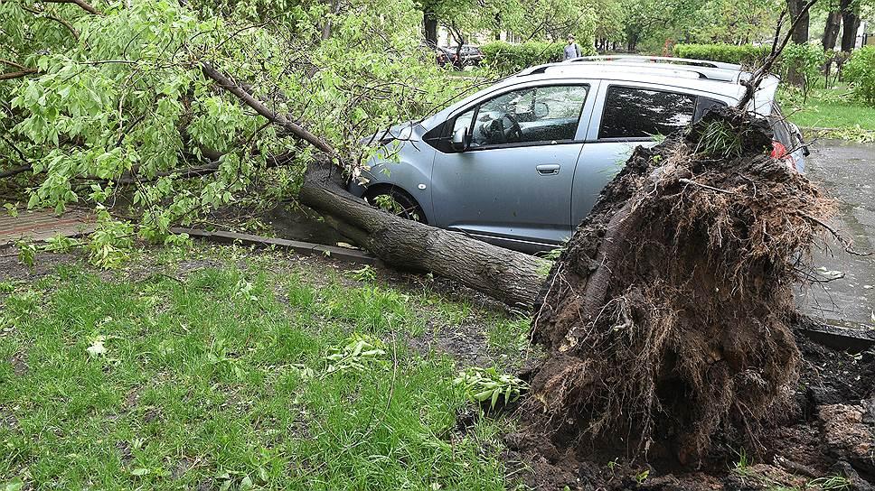 Последствия майского урагана в Москве
