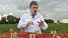«Совхоз им. Ленина» просит взыскать с Павла Грудинина более 1 млрд рублей