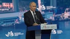 Путин: не на протесты ходить надо, а детей рожать
