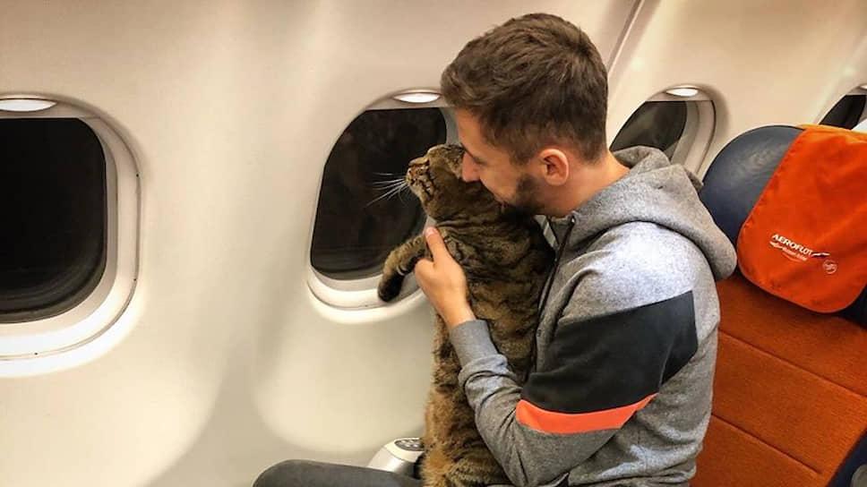Михаил Галин и его кот