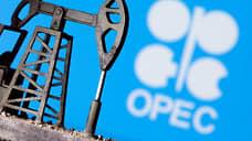 СМИ: комитет ОПЕК+ не вынес рекомендацию по добыче на февраль