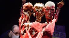 Депутат попросил проверить законность проведения выставки человеческих тел на ВДНХ