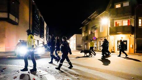Полиция Норвегии назвала нападение с луком терактом