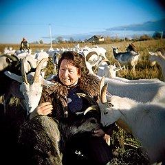 Лариса Суханова и ее козы, которых она знает по именам