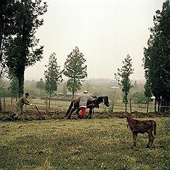 В селе Первели, как, впрочем, и в других селах района, сельхозтехника незатейлива — лошадь да плуг