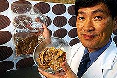 Митсуюки Икеда из Университета Окаямы демонстрирует искусственное мясо, которое по своему составу является чистым диетическим продуктом: 63% — это чистый протеин, еще 25% — углеводы, 9% — минералы и 3% — жирные кислоты