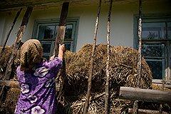 Старые хаты, утепленные соломой, в Залесцах можно купить за 2 тысячи гривен — это примерно 7 тысяч рублей
