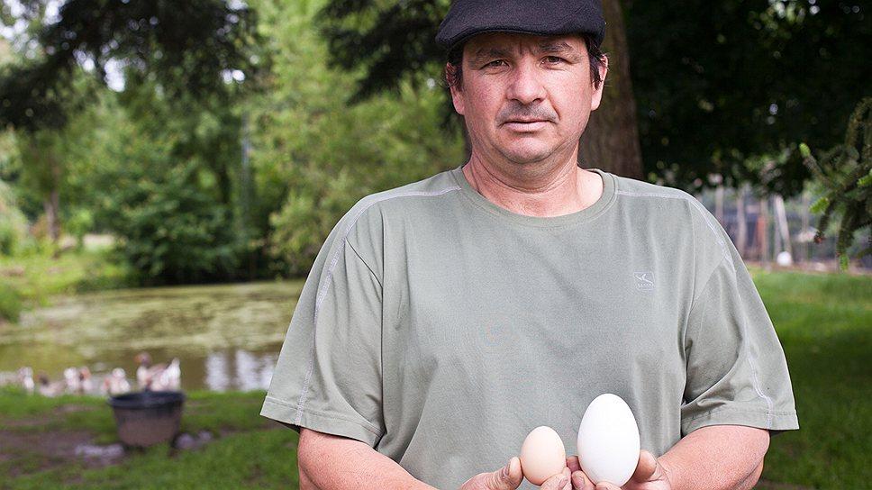 На ферме Le Plessis возрождают почти исчезнувшие породы голубоглазого туренского гуся и черной курицы. Они не выдержали конкуренции с агропромышленностью: слишком мелкие, невыгодные. А теперь снова входят в моду — оказались гораздо вкуснее промышленных