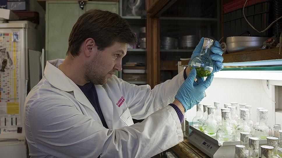 Павел Пашковский изучает жизнь растений в экстремальных условиях
